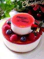 ... 2段クリスマスケーキ(冷凍便