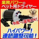 ペット 犬 大型犬