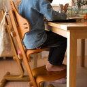 【送料無料】リボ社 フレキシットチェア・ジュニア 子供 椅子 ダイニング テーブルチェア キッズチェア イス 子ども クッション 高さ調整 食事 ハイチェア 北欧 木製チェア 前傾椅子