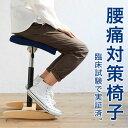 【あす楽】 バランス シナジー バランスチェア 大人 | 腰痛 椅子 腰痛椅子 体幹 鍛える 姿勢が良くなる 猫背 姿勢矯正 姿勢 矯正 椅子 いす オフィスチェア ストレッチ イス デスクチェア チ