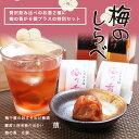 梅のしらべ 贅沢飲み比べのお酒2種に梅の香が6個プラスの特別セット