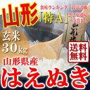 山形県産 はえぬき 玄米 30kg 29年産 特A米 一等米...