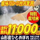 Toku_hitome_30
