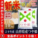 29年産 山形県産 つや姫 白米 10kg(5kg×2袋)【...