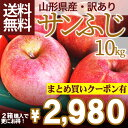 りんご 訳あり 10kg 送料無料 サンふじ 山形県産 産地直送りんご お徳用りんご サンふ