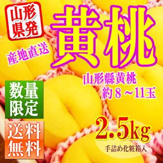 山形不黃色桃 2.5 公斤 (大約 8-11) 從禮物化妝盒裝黃色桃,山形縣黃金生產新鮮黃桃。