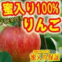 2012-ring-106