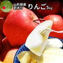 \只今、お届け中/ りんご 訳あり 5kg サンふじ 早生ふじ サンつがる 山形県産 産地直送りんご お徳用林檎 ジャムにもOKなりんご りんごジュースにもOK! 家庭用りんご フルーツ 送料無料 健康 食べ物 果物 アップル