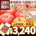山形県産 サンふじりんご 5kg訳ありでは不安な方必見のりん...
