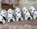 お待たせ致しました。黒×白ダルメシアン犬が仕上がります。6月4日入荷・発送可能となります。...
