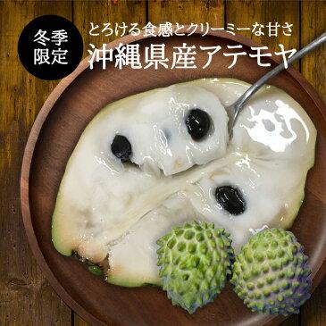【送料無料】沖縄県産アテモヤ1Kg(3玉〜6玉) 森のアイスクリーム カスタ−ドアップル