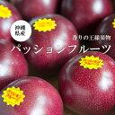 【送料無料】沖縄産パッションフルーツ1箱(8〜12玉)ギフト贈答品
