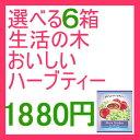 Img61247099