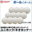 【SUNLUCKY(サンラッキー)】 ボール(1ダース) 【...
