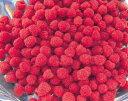 冷凍フルーツ ラズベリー500g×2=1kg ★冷凍配送★こんなにも甘くてスッパイおいしいフルーツが!!!ダイエット効果でよく知られているカプサイシン唐辛子の有効成分の3倍の脂肪分解力なのには驚きです。