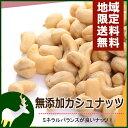 無添加カシュナッツ 1kg【業務用卸価格】【送料無料】