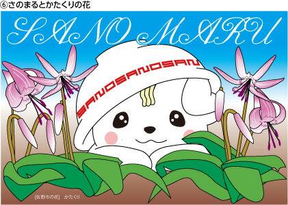 さのまる ポストカード 1枚【切手なし】 「さのまるとかたくりの花」 さのまるポストカード…...:s-yamato:10000968