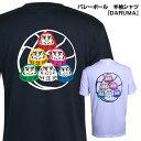 バレーボール 練習着 半袖 Tシャツ 「バレーボールDARUMA」 (ノースアイランド) NORTHISLAND