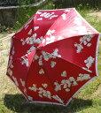 売れ筋【傘】内側から見ても綺麗なジャンプ傘べっ甲風手持ち ANNA CRISTINA