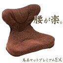 腰痛対策 クッション「馬具マットプレミアムEX」【椅子用馬具...
