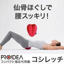 【100円クーポン】 送料無料「コシレッチ」【指圧代用器 マ...
