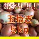 【数量限定!!】訳あり!!たまねぎ5kg!!北海道産【送料無料】訳有り玉ねぎ玉葱