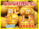 新じゃがいも鹿児島産 【ゴールド】 10kgL,Mサイズ混合★煮崩れしにくいゴールド芋で