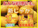 新じゃがいも鹿児島産【ゴールド】5kgM、Lサイズ春の味覚