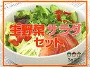 生野菜サラダ詰め合わせ