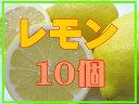 レモン10個セット●野菜ジュース、ドレッシング作りに…