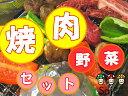 バーベキュー野菜セット 焼肉のおとも野菜 バーベキュー に♪ キャンプ に♪B.B.Q!!BBQ!!!