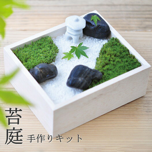 世界に一つだけの苔のお庭苔庭園手作りキット苔盆(KOKEBON)(インテリア・おしゃれ・かわいい・こ