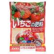 JOYアグリス いちごの肥料 500g 有機肥料 (イチゴ・有機栽培・家庭菜園・オーガニック 無農薬)