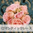 【予約苗】【バラ苗】 京成バラ園 デルイター ロマンティック レース 大苗 7号鉢 ピンク系