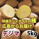出島(デジマ でじま) ジャガイモ 種芋 5kg【充填時】【8月より入荷次第お届け予定】【S?Lサイ