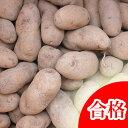 【春植え予約ジャガイモ】【種芋】ジャガイモ じゃがいもの種 1kg【シャドークイーン】【検査合格済】【サイズ混合】【02P10Jan15】【HLS_DU】