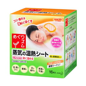 16 pieces of warm temperature sheets of the visiting Kao ズム steam