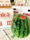 『新山寺スイカ』手間を惜しまず一つ一つ丁寧に作った逸品です!6L以上の大玉一つをご提供。食べ応えは十分です。