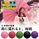 ラッピング無料雨に濡れると浮き出る桜柄!16本骨の桜傘