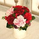 ショッピング作り方 Carnation Pot カーネーションポット(キット・作り方説明書付き)