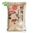 令和元年新米!新潟産特別栽培コシヒカリ精米10kg(5kg×2)