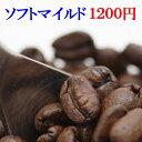 コーヒー豆 送料無料 お試し コーヒー 1200円ポッキリ ...