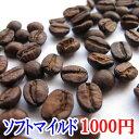 コーヒー豆 送料無料 お試し コーヒー 1000円ポッキ