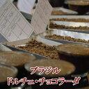 ショッピングお試しセット プレミアムコーヒー ブラジル・ドルチェ・チョコラーダ 500g 50杯分 コーヒー豆 送料無料 お試し 珈琲 楽天 買い回り 買いまわり ポイント消化