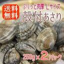 【ボイル殻付あさり】濃厚で美味しいボイルしてるから温めるだけ砂抜き済み250gx2パックアサリ/あさり/送料無料/