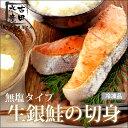 【無塩タイプ】生銀鮭の切身(一切れ60g×10)(冷凍便)[メール便:不可]