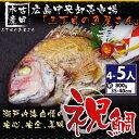 【お食い初め】魚屋さんのお祝い天然焼き鯛800g(4〜5人分...