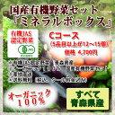 オーガニック野菜【青森県産】ミネラルボックスCコース