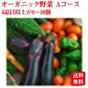 オーガニック野菜【青森県産】ミネラルボックスAコース