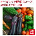 オーガニック野菜【青森県産】ミネラルボックスBコース